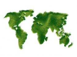 Greenpeace 250Kč